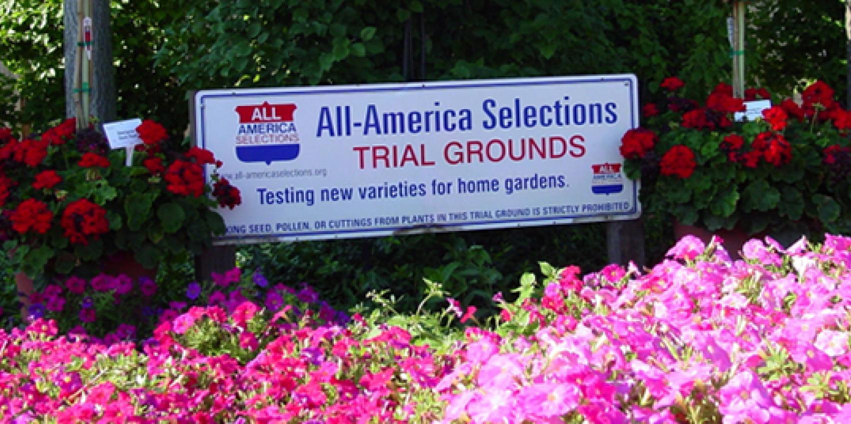 All America Selections National Garden Bureau American Public Gardens Association