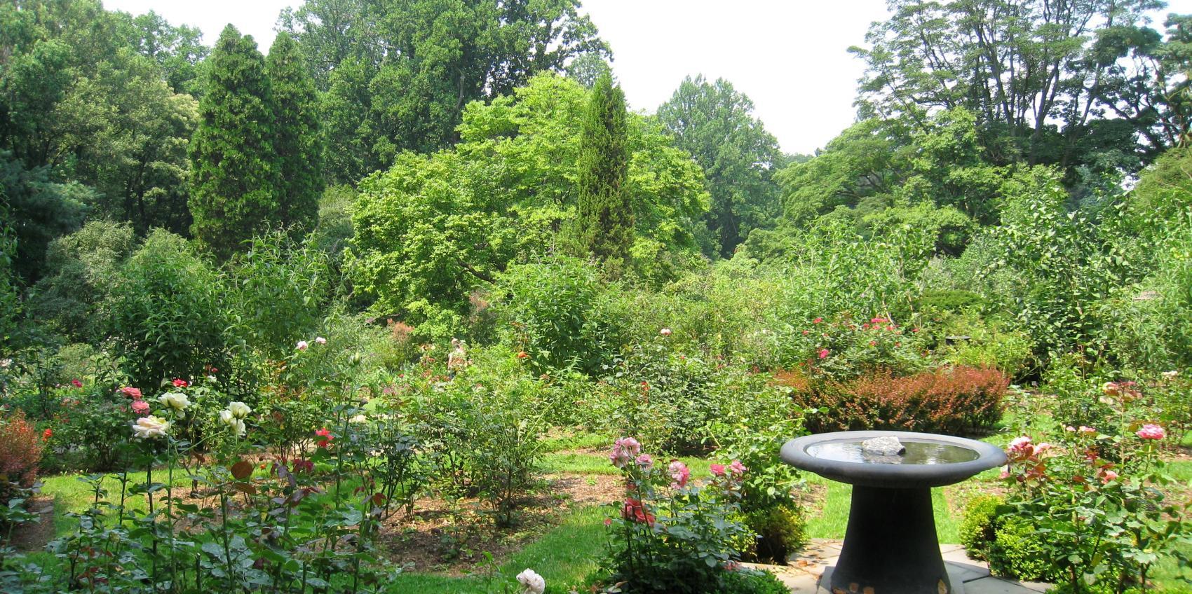 Arboretum Of The Barnes Foundation American Public Gardens Association