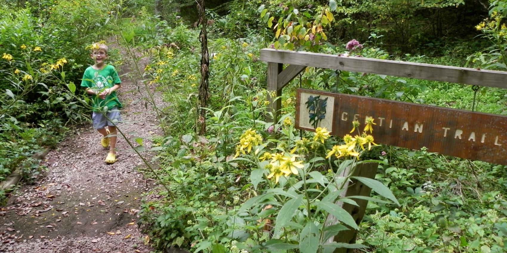 Bowman 39 S Hill Wildflower Preserve American Public Gardens Association