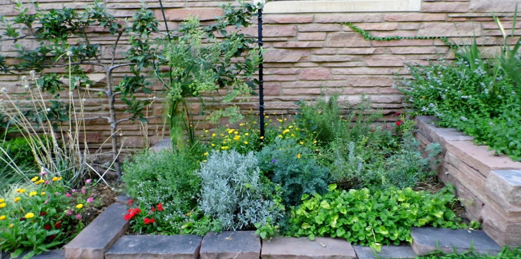 Colorado shakespeare gardens american public gardens for American garden association