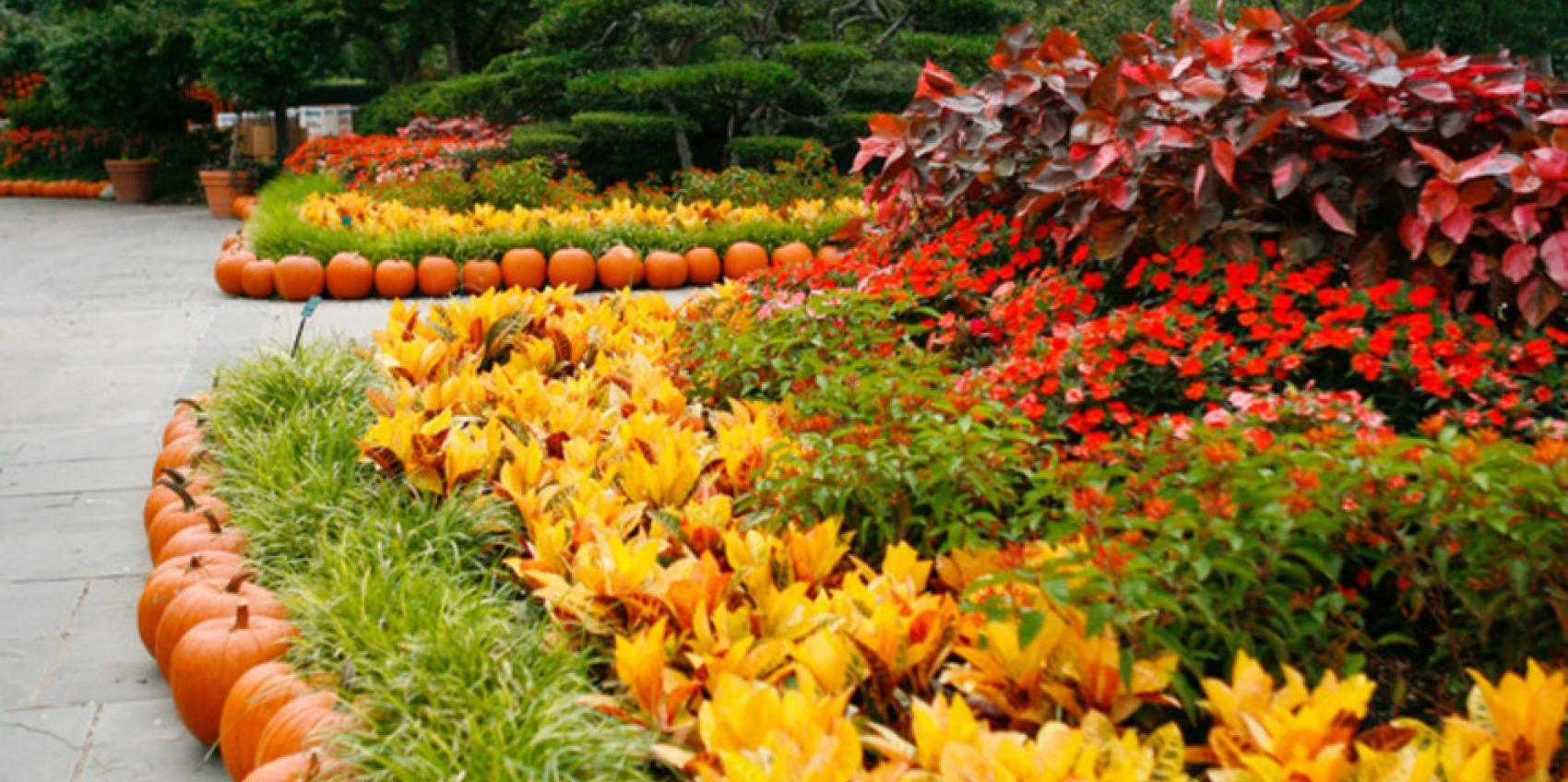 Dallas Arboretum U0026 Botanical Society | American Public Gardens Association