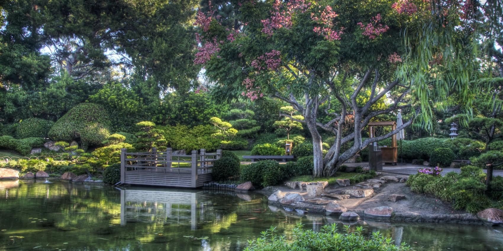 Earl Burns Miller Japanese Garden | American Public Gardens Association