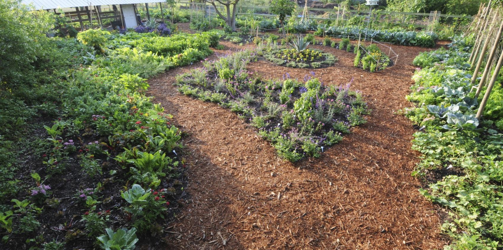 Exploration Gardens UF /IFAS Extension | American Public Gardens ...