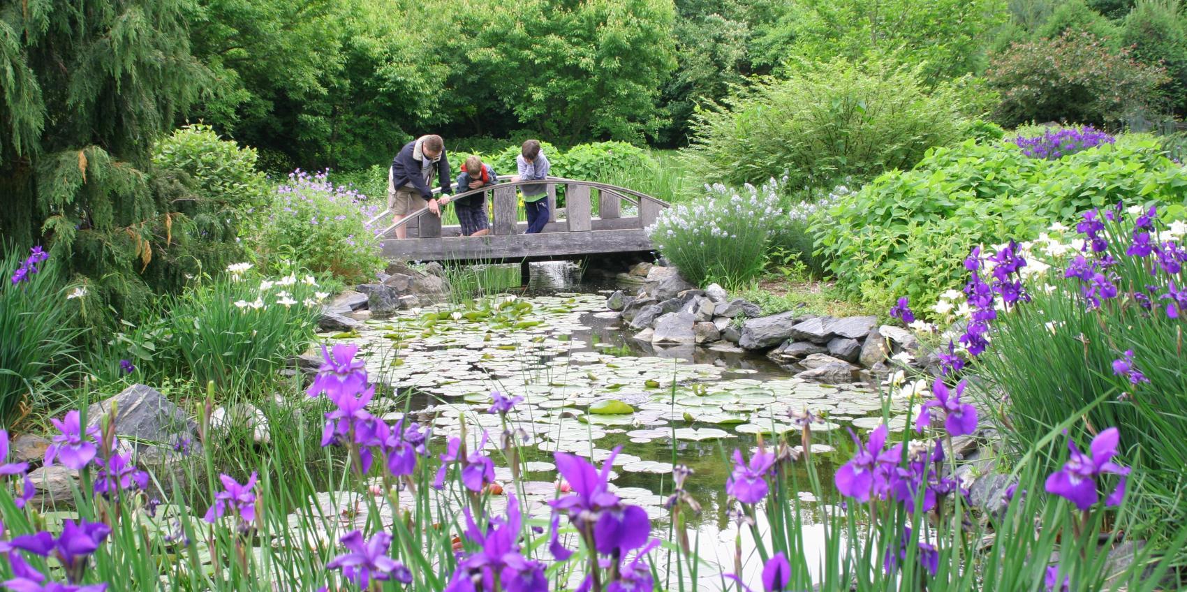 Klehm arboretum botanic garden american public gardens for Garden information sites