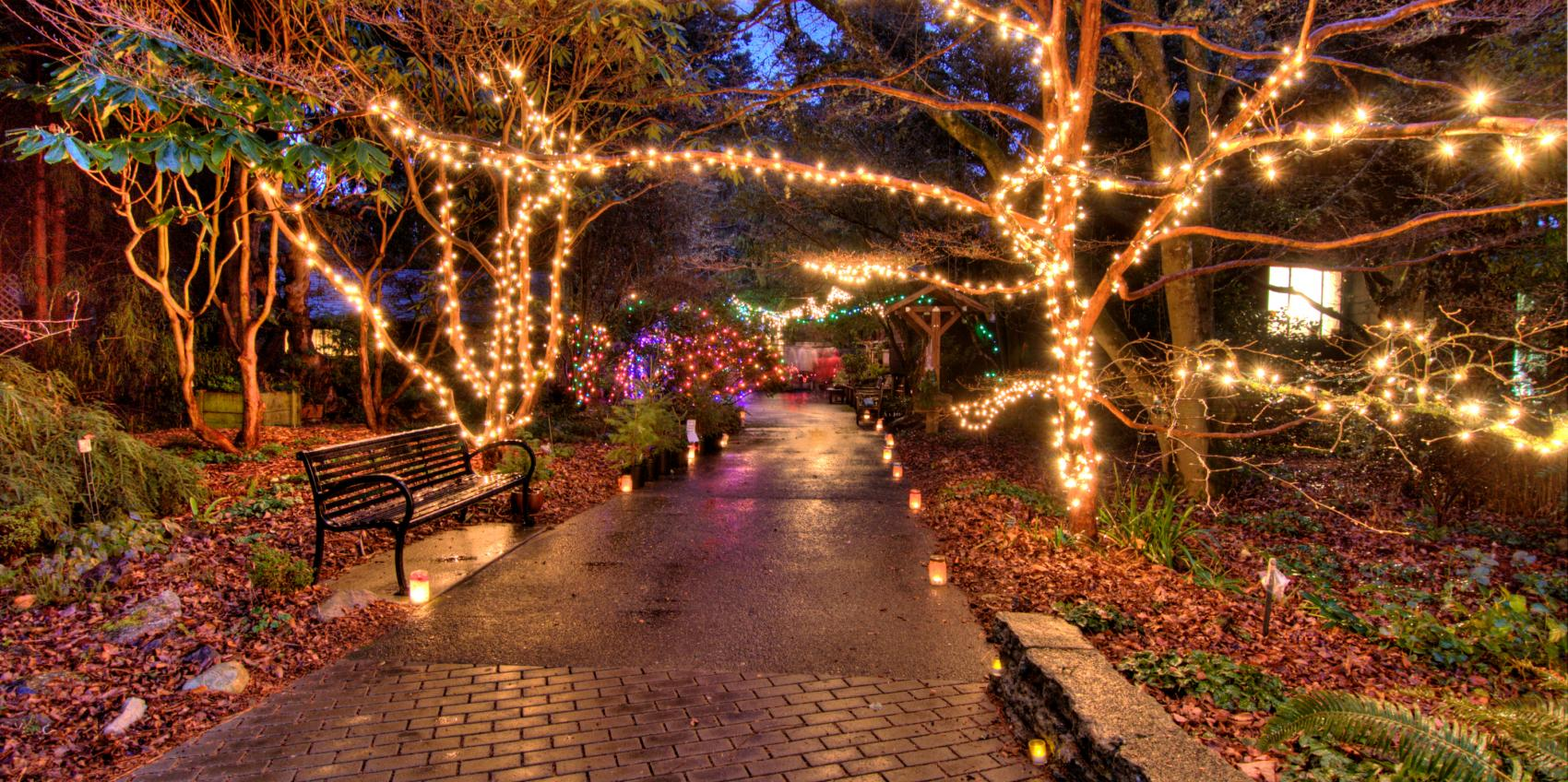 Beautiful Botanical Gardens Lights Mold - Brown Nature Garden ...