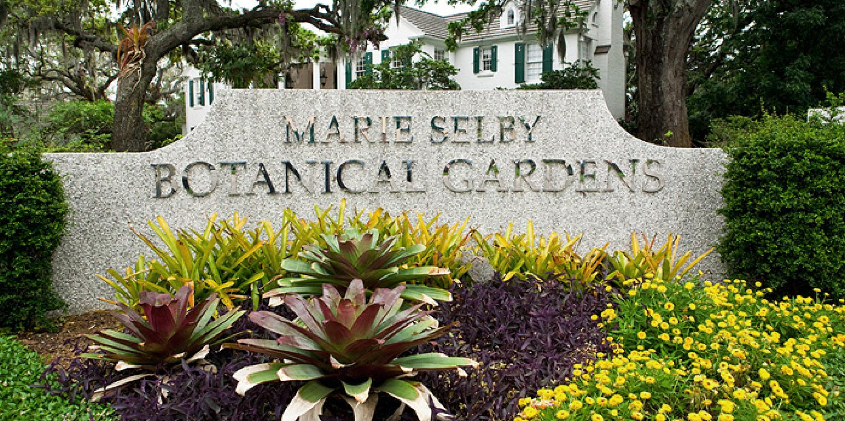 Charmant Marie Selby Botanical Gardens Is The Only Botanical Garden In The World  Dedicated To The Display And Study Of Orchids, Bromeliads, Gesneriads,  Epiphytes And ...