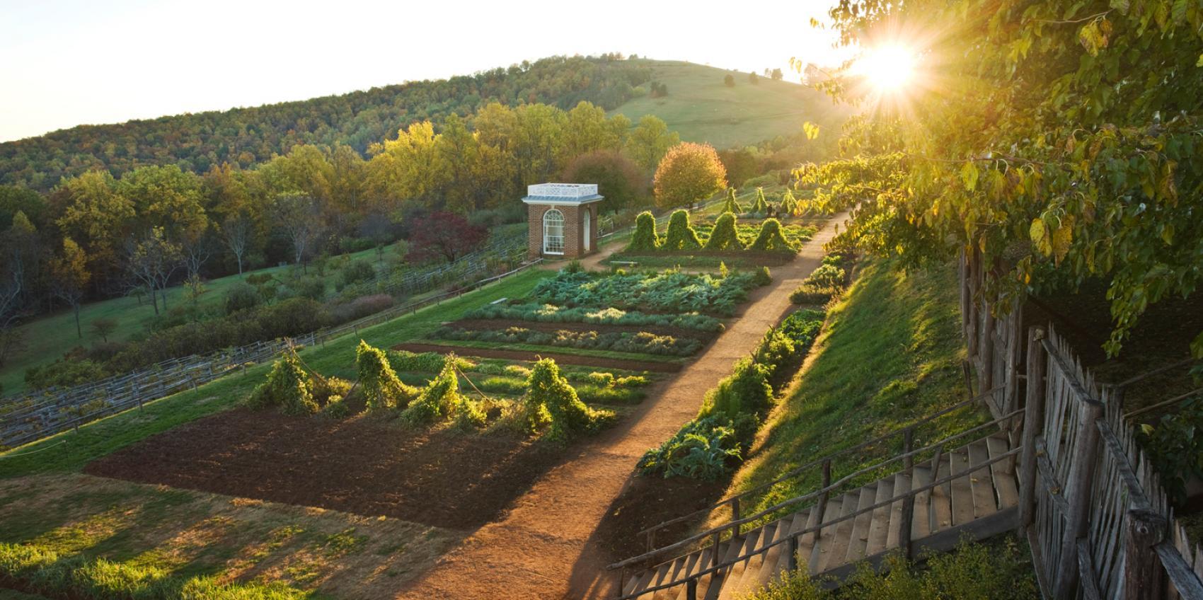 Attrayant Garden Category