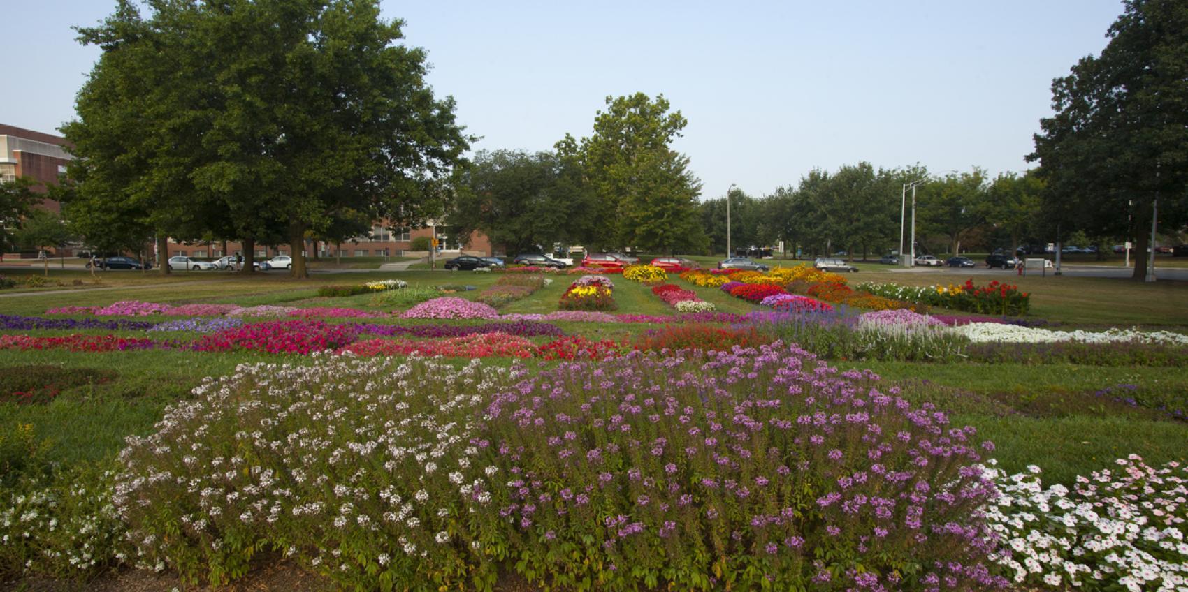 Ohio State University Chadwick Arboretum & Learning Gardens ...