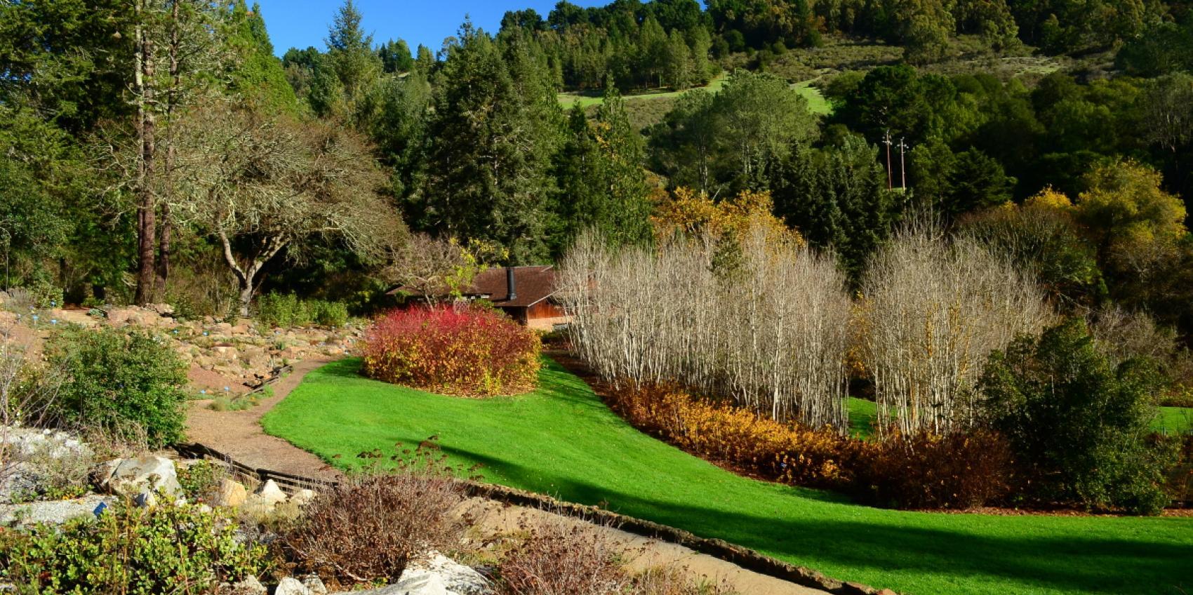 Regional Parks Botanic Garden American Public Gardens Association