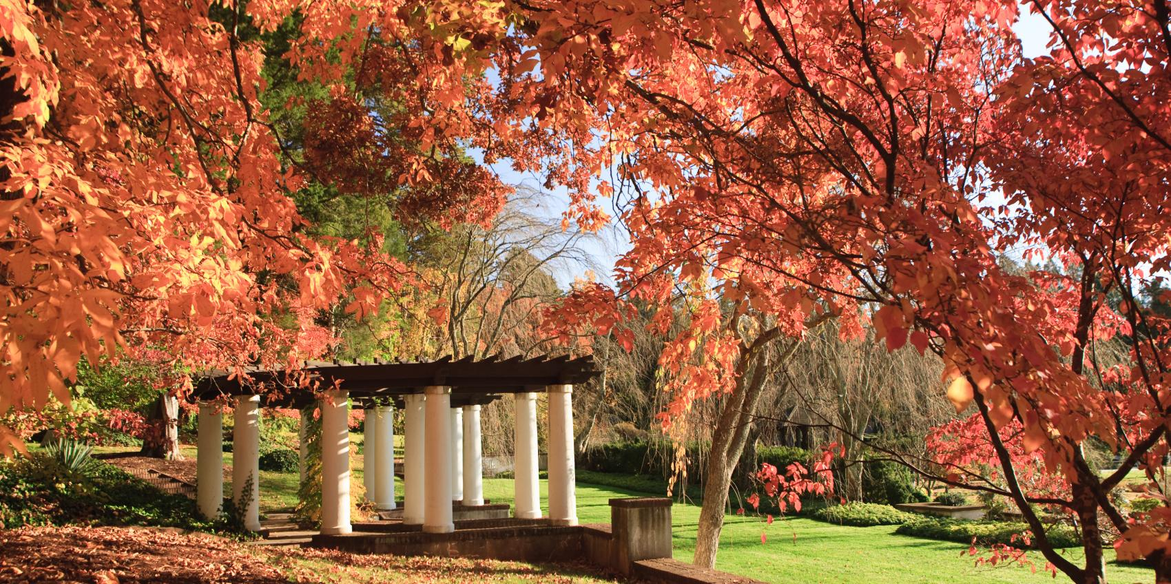 The 129 Acres That Comprise Reynolda Gardens Of Wake Forest University Were  Once At The Center Of Reynolda, The Early Twentieth Century Estate Of Mr.  And ...