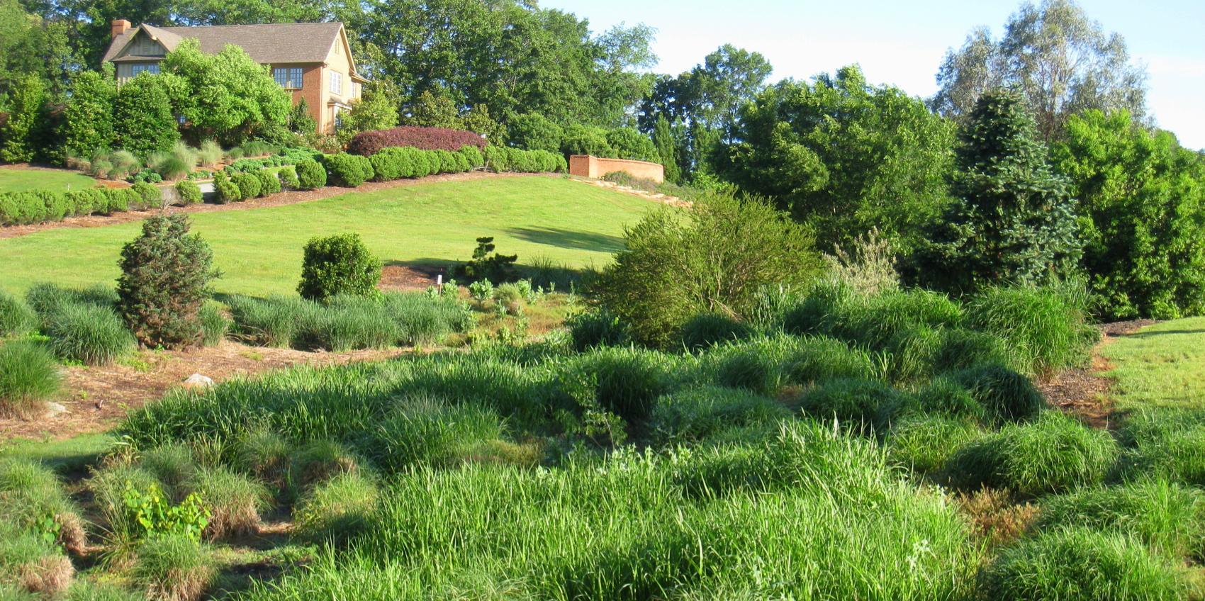 South Carolina Botanical Garden American Public Gardens Association