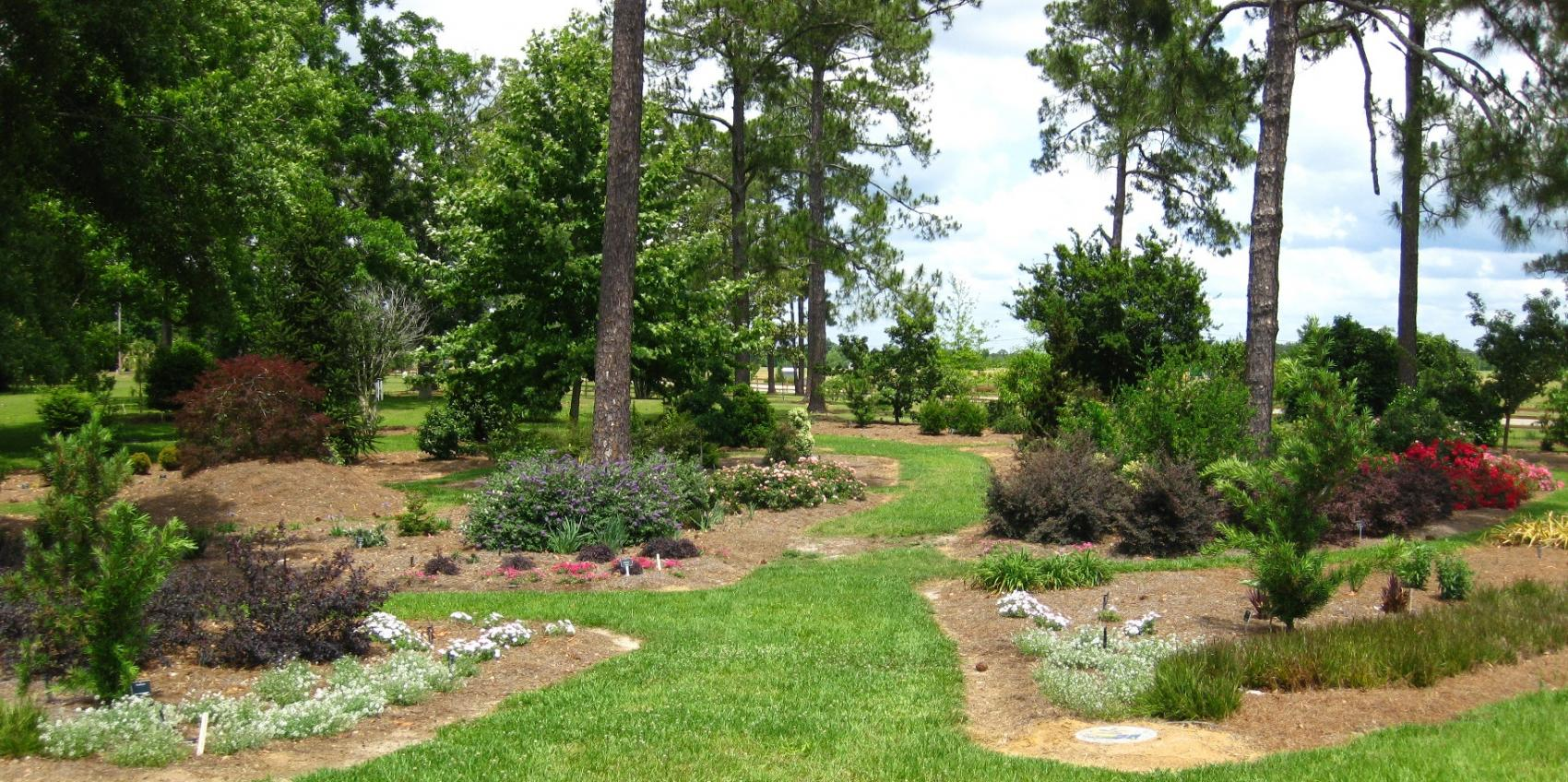 Gardens of the big bend at university of florida for American garden association