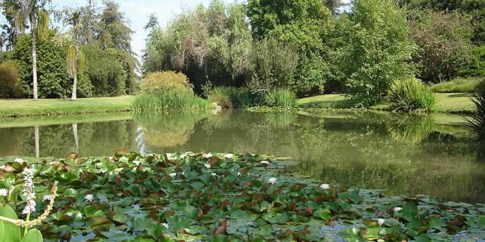 Fullerton Arboretum American Public Gardens Association