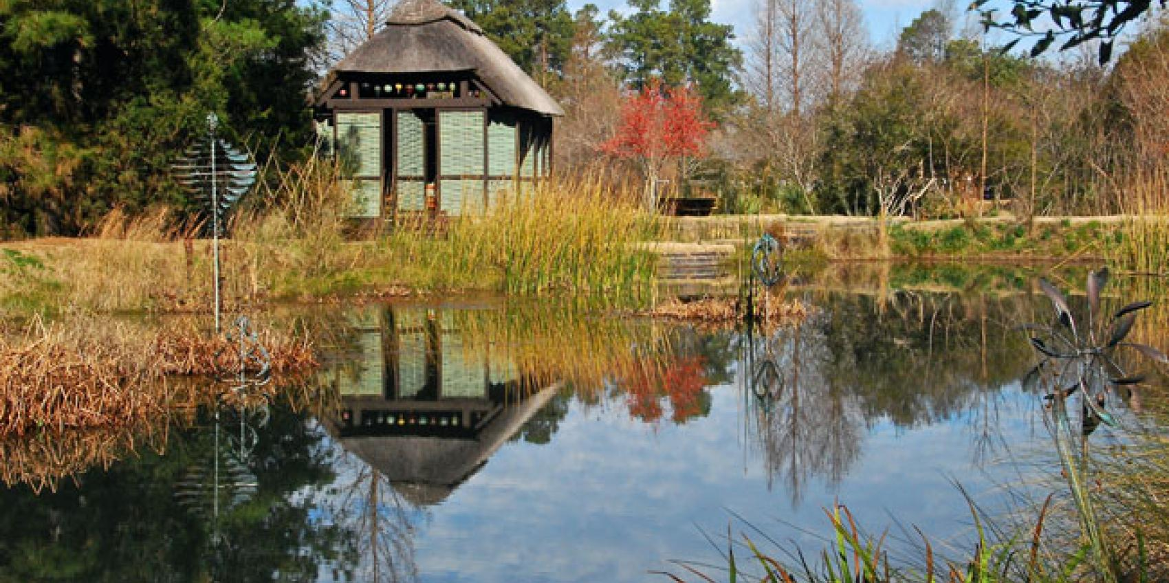 Superieur Nestled Among Fields Of Corn And Soybeans, This Dynamic 50 Acre Garden Is  Set In The Rural Pee Dee Region Near Lake City, South Carolina.