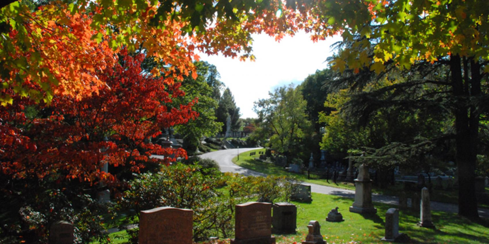 Mount Auburn Cemetery American Public Gardens Association