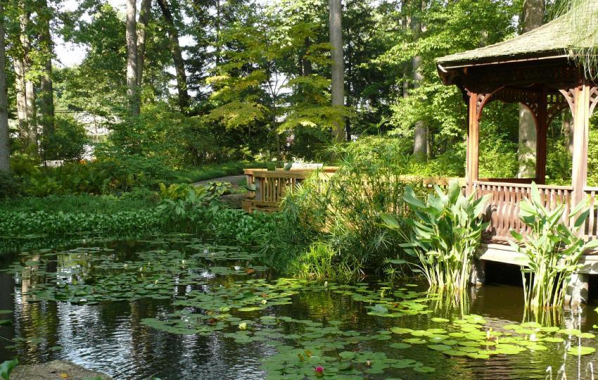 American Public Gardens Association