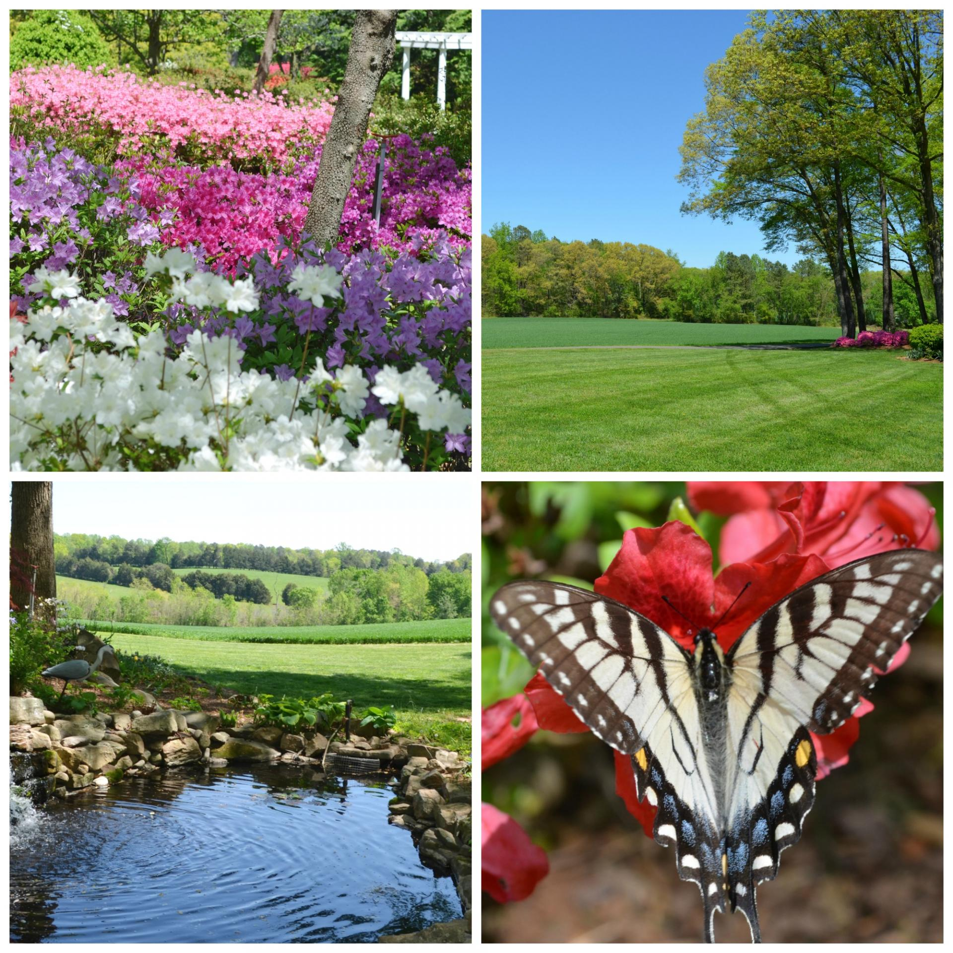 Lewis Ginter Botanical Garden Is The Recipient Of A Gift Of A 79 Acre  Estate In Hanover County, Near Rockville, Virginia. This Is Located In A  Rural Area ...
