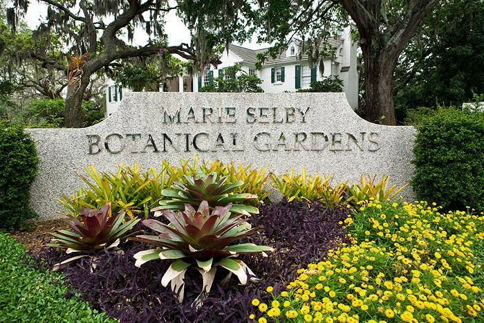 Merveilleux Marie Selby Botanical Gardens Has Selected A National Landscape Design  Studio To Develop Its Master Site Plan And Establish The Different Uses Of  The Living ...