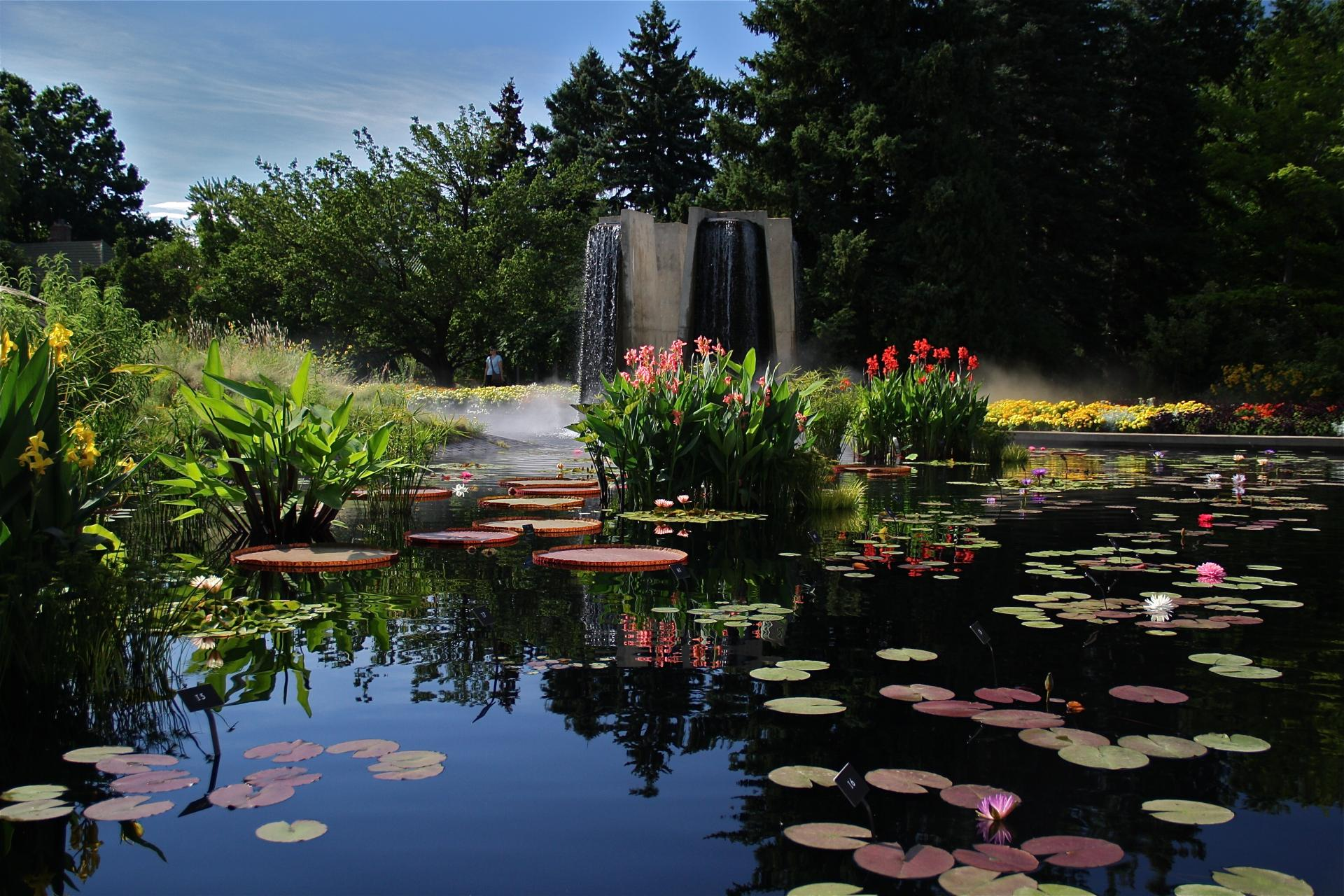 Charming Denver Public Garden Shoots To Top Of Visitor List