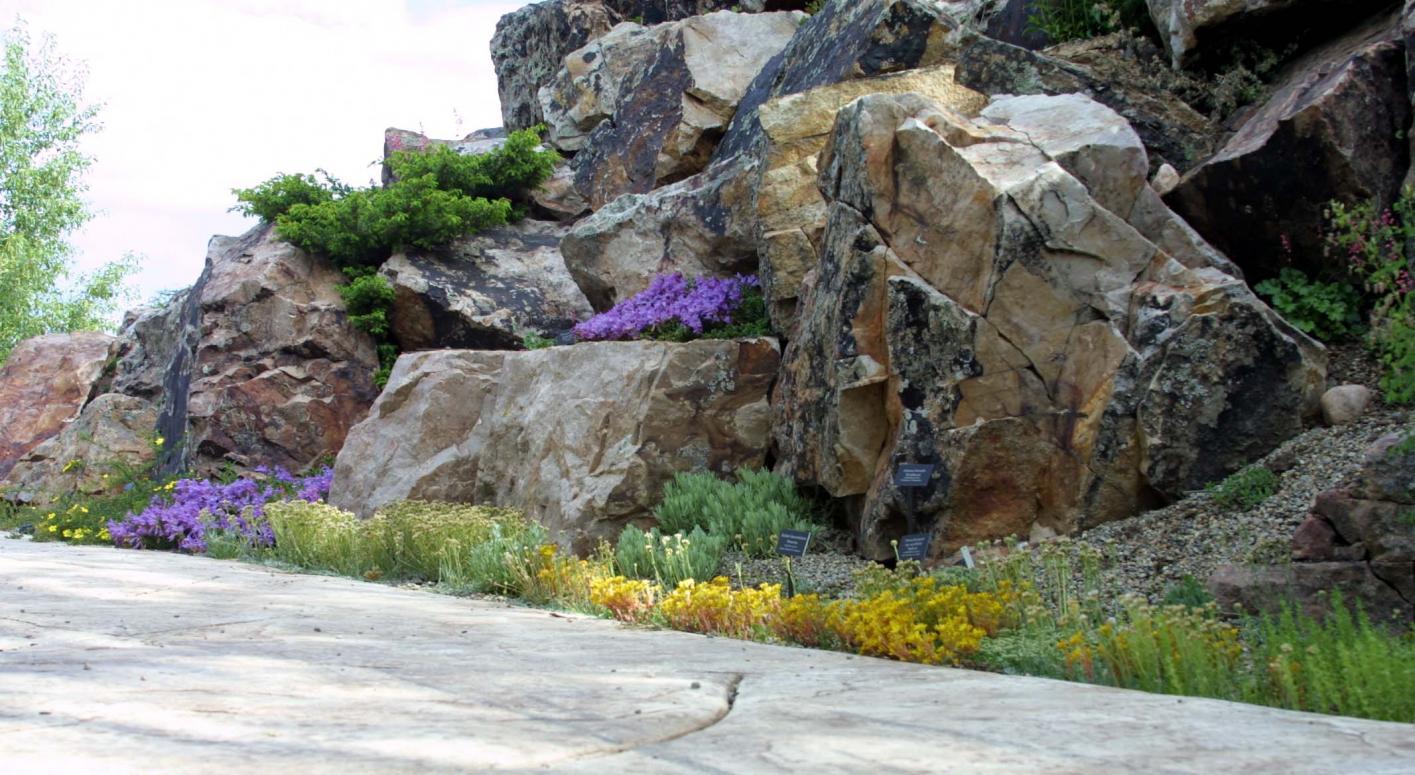 My Ford Benefits >> Alpine Plants of Colorado | American Public Gardens Association