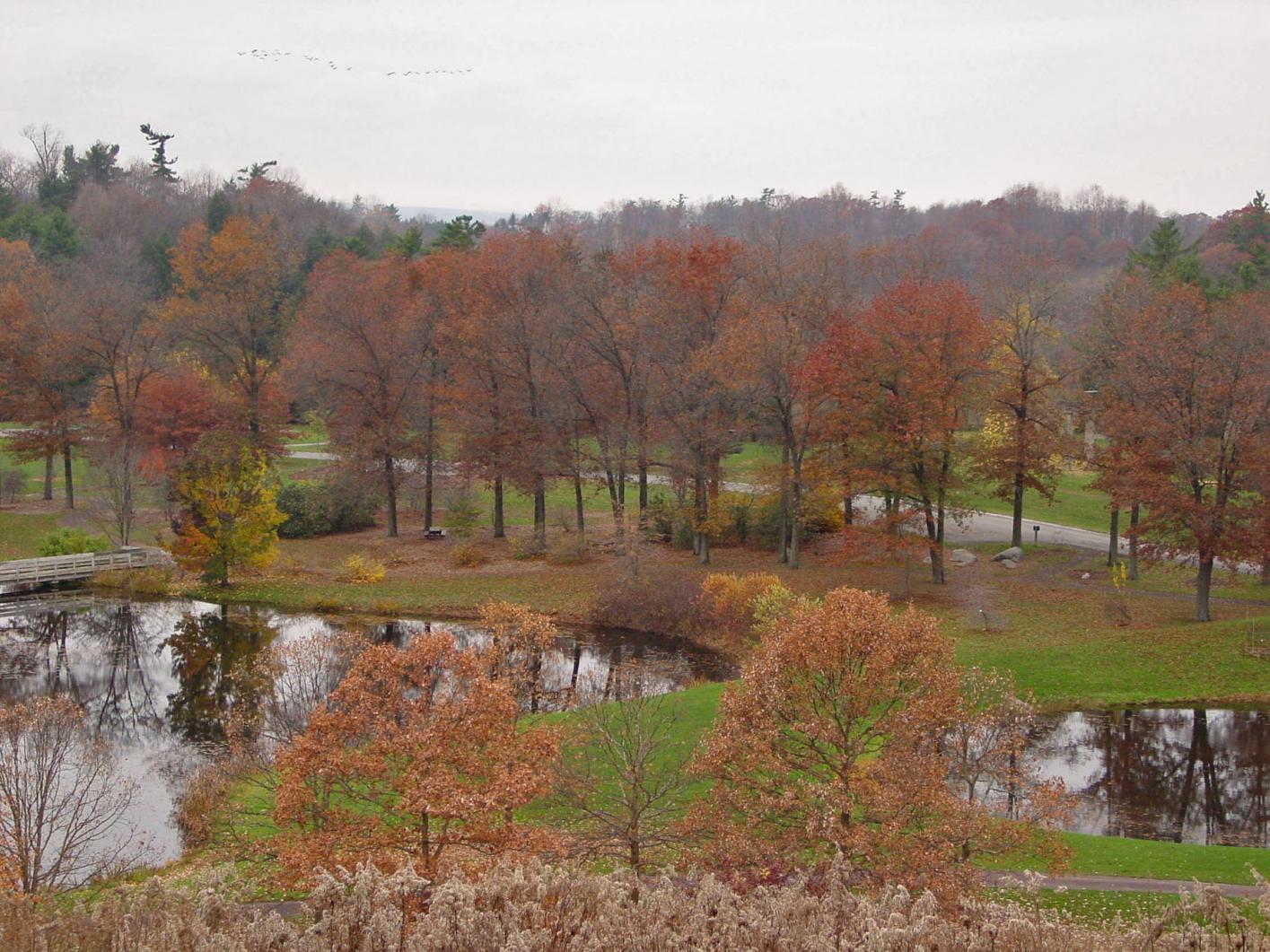 Quercus Multisite | American Public Gardens Association